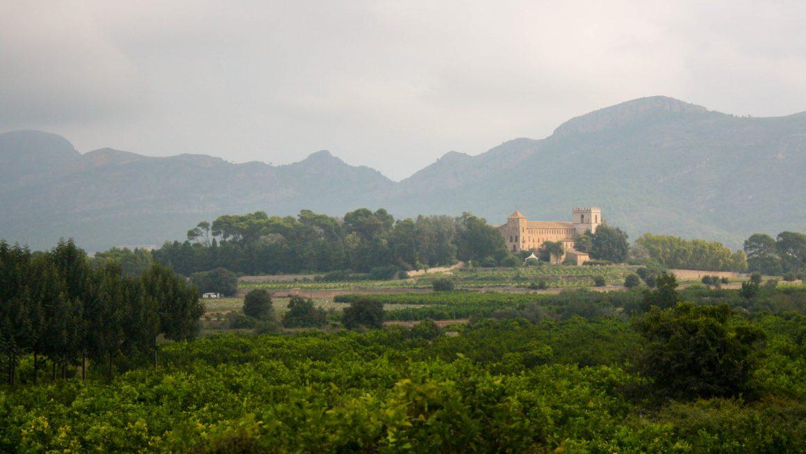 Visites guiades al monestir de Sant Jeroni de Cotalba – Porrat de Sant Macià 2020